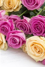 Pink and yellow roses, flowers, wood board