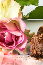 Pink rose and chocolate candy