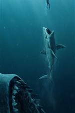 iPhone обои Мэг, акула, подводная