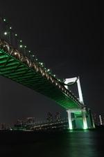 Tóquio, Japão, Rainbow Bridge, rio, noite, cidade