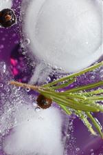 Tonic Rosemary, drinks, ice