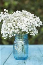 White little flowers, bouquet, bottle