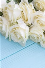 White roses, blue wood board