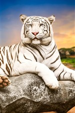 Preview iPhone wallpaper White tiger, stone, dusk