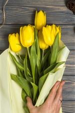 Yellow tulips, gift, rope