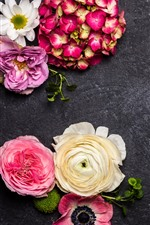 Preview iPhone wallpaper Colorful flowers, different kinds