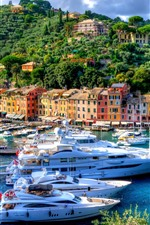 Preview iPhone wallpaper Italy, Portofino, harbour, city, yachts, trees