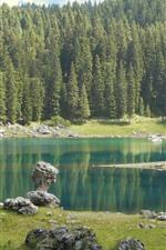 Lake Carezza, trees, Italy