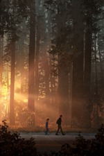 Life is Strange 2, game art picture, forest, sun rays