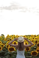 Many sunflowers, girl, back view, summer
