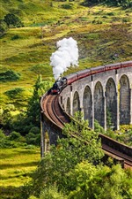 Preview iPhone wallpaper Scotland, train, smoke, viaduct, trees, countryside