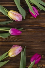 Some pink tulips, round, wood board background