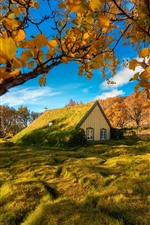 Turf Church, Iceland, trees, grass, autumn