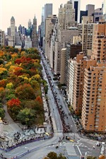 USA, New York, city, skyscrapers, park, trees, autumn