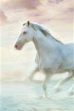 White horse running, water, art picture