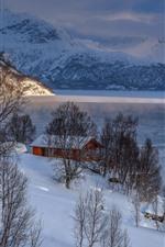 Winter, mountains, trees, snow, house, lake