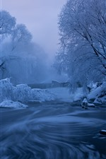 Winter, snow, trees, river, fog, dawn