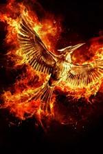 Beautiful phoenix, wings, flight, fire, black background
