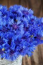 Preview iPhone wallpaper Blue cornflowers, bouquet