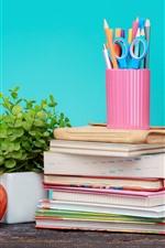 Books, red apple, pencils, still life