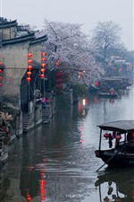 Preview iPhone wallpaper China, village, river, spring, flowers