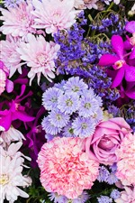 Preview iPhone wallpaper Colorful flowers, many kinds, petals