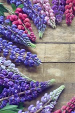 Preview iPhone wallpaper Colorful lupin flowers, spring