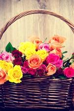 Colorful roses, basket, teddy bear