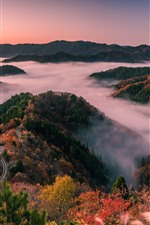 Preview iPhone wallpaper Japan, Shiga Prefecture, road, hills, trees, fog, morning