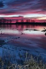 Lake, grass, dusk, trees, purple clouds