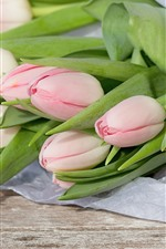 Preview iPhone wallpaper Light pink tulips, bouquet