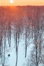 Preview iPhone wallpaper Lithuania, Kaunas, trees, park, sunset, snow, winter