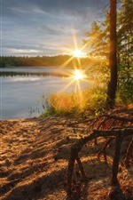 Preview iPhone wallpaper Morning, sunrise, trees, lake