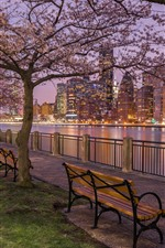 Preview iPhone wallpaper New York, street, bench, night, buildings, river, trees, lights