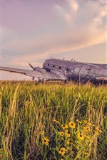 Preview iPhone wallpaper Old plane, grass