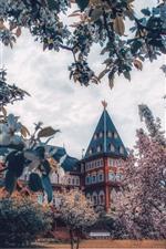 Rússia, moscou, palácio, flores, flor, primavera