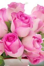Some pink roses, vase, hazy background
