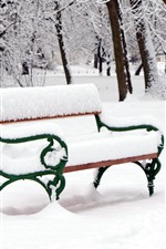 Thick snow, winter, bench, trees, park