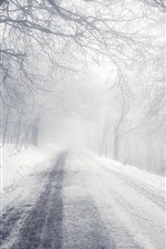 Winter, road, snow, trees, morning, fog
