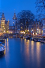 Preview iPhone wallpaper Amsterdam, Netherland, river, boat, trees, night, lights