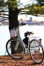 Preview iPhone wallpaper Bike, river, trees