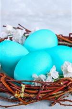 Ovos azuis, ninho, Páscoa