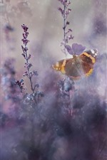 Preview iPhone wallpaper Butterfly, purple flowers, hazy