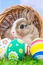 Preview iPhone wallpaper Colorful Easter eggs, rabbit, basket, green grass