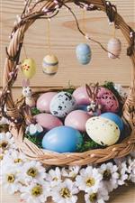Ovos coloridos, cesta, flores brancas, Páscoa