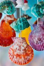 Conchas coloridas, decoração