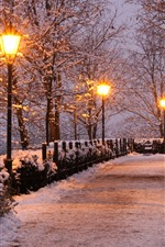 Preview iPhone wallpaper Czech Republic, park, trees, snow, lamps, bench, winter, night