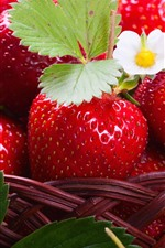 Preview iPhone wallpaper Delicious strawberries, fruit, flowers