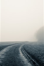 Preview iPhone wallpaper Fog, path, tree, morning, hazy