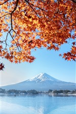 Preview iPhone wallpaper Fuji Mountain, red maple leaves, lake, autumn, Japan